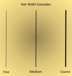 Difference between fine and thin hair